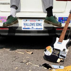 Wallows Song