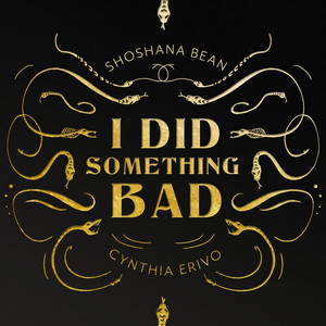 I Did Something Bad (Cover)
