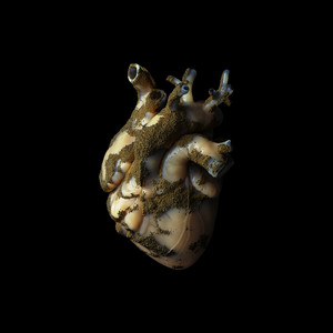 Uranium Heart by Highasakite
