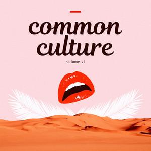 Common Culture, Vol. VI album