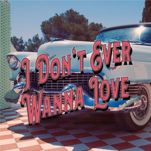 I Don't Ever Wanna Love