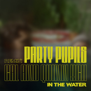 In the Water (with Quinn XCII / Party Pupils Remix)