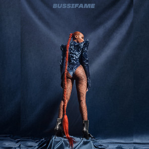 Bussifame cover art