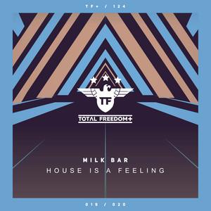 House Is A Feeling - Radio Edit