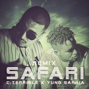 Safari (Remix)