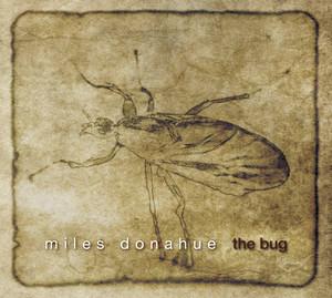 The Bug album