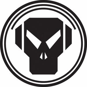 The Raven / Density / Skylab