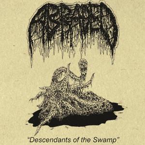 Veracity of Disease cover art