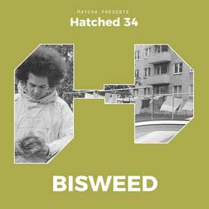 Hatched 34