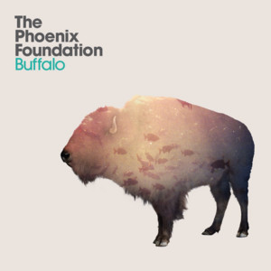 Buffalo cover art