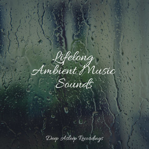 Lifelong Ambient Music Sounds