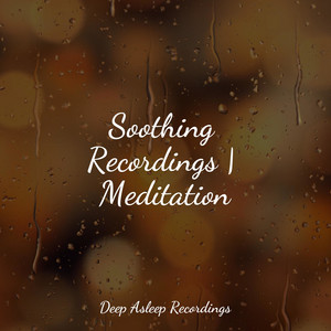 Soothing Recordings | Meditation