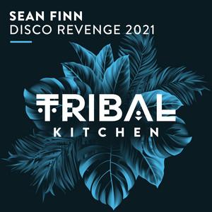 Disco Revenge 2021 - Radio Edit cover art