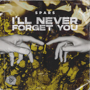 I'll Never Forget You