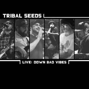 Down Bad Vibes (Live)
