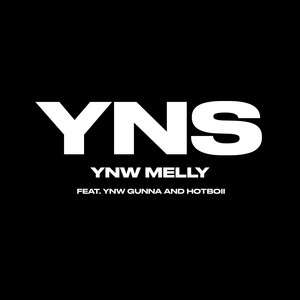 Yung N**** Sh*t (feat. YNW Gunna & Hotboii)
