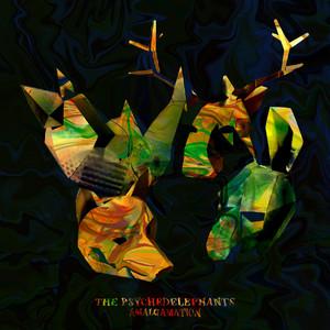Amalgamation album