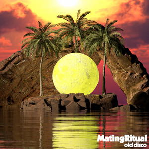 Old Disco by Mating Ritual