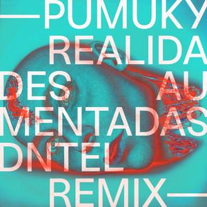 Realidades Aumentadas (Dntel Remix)