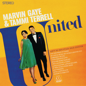 Marvin Gaye – if I could build my whole world around you (Acapella)