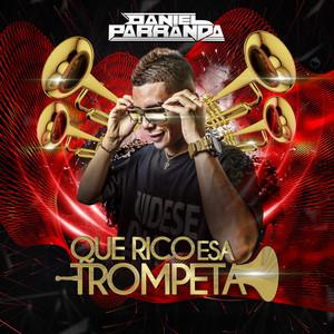Que Parezca Fiesta Hp (Remix) cover art