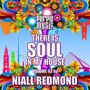 Niall Redmond Presents There is Soul in My House, Vol. 43