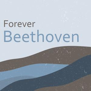 Grosse Fuge in B-Flat Major, Op. 133: Allegro molto e con brio (II) cover art