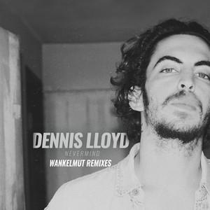 Nevermind (Wankelmut Remix) cover art