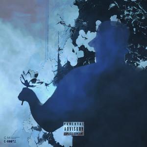 C-Rootz album