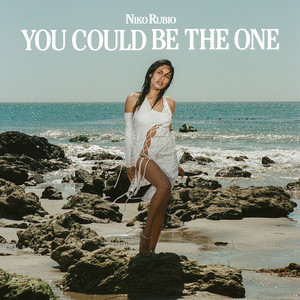 You Could Be The One cover art