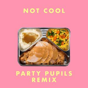 Not Cool (Party Pupils Remix)