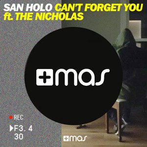 Can't Forget You - Single