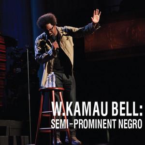 Semi-Prominent Negro Audiobook