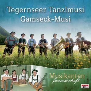 Gamsgebirg – Marsch cover art