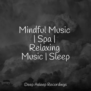 Mindful Music | Spa | Relaxing Music | Sleep