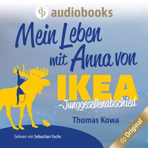 Mein Leben mit Anna von IKEA - Junggesellenabschied - Anna von IKEA-Reihe, Band 3 (Ungekürzt) Hörbuch kostenlos