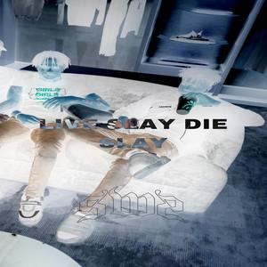 LIVE SLAY DIE SLAY