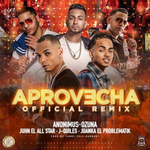 Aprovecha (Remix)