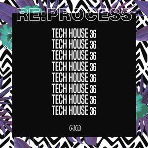 Re:Process - Tech House Vol. 36