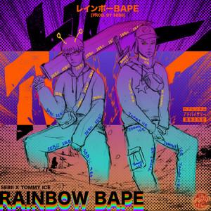 Rainbow Bape