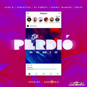 Se Perdio (Remix)
