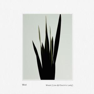 Weak (Live @ Electric Lady)