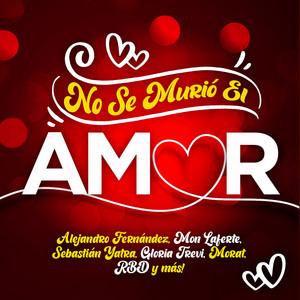 Como Yo Te Amo by Gloria Trevi