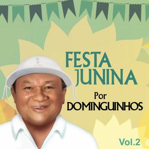 Festa Junina por Dominguinhos, Vol. 2