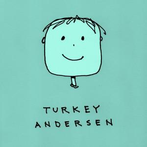 Turkey Andersen