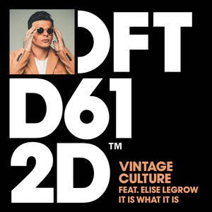 Vintage Culture Feat. Elise LeGrow - It Is What It Is