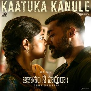 """Kaatuka Kanule (From """"Aakaasam Nee Haddhu Ra"""")"""