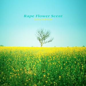 Rape Flower Scent by Yellowish
