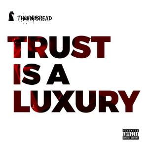 Trust Is a Luxury