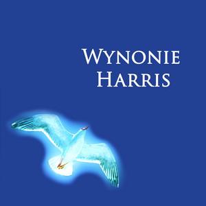 Rock Mister Blues by Wynonie Harris